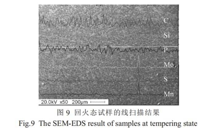 SEM-EDS sample