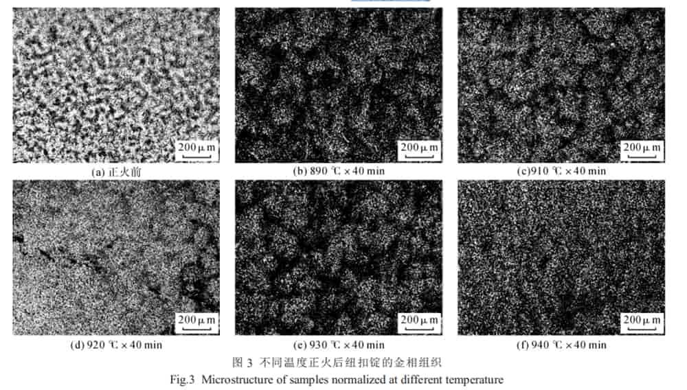 microstructure of samples